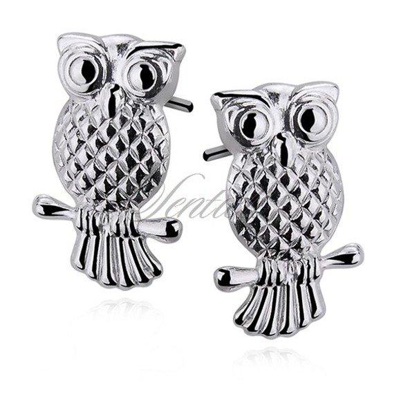Silver (925) earrings birds / owls